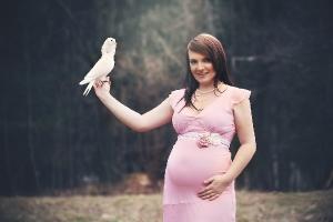 Těhotné_1